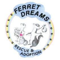 Ferret_Dreams_Rescue