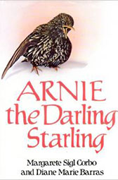 arnie-the-darling-starling